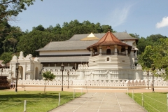 tooth-relic-temple-kandy