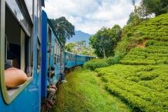 train-visit